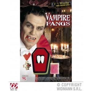 Deux dents de vampire dans cercueil