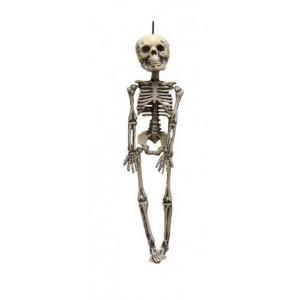 Décoration squelette 30cm