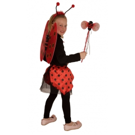 Set Coccinelle Enfant