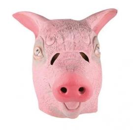 Masque latex porc