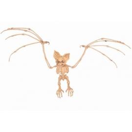 Décoration chat squelette