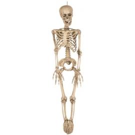 Décoration squelette 90cm