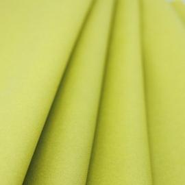 Rouleau de nappe voie sèche vert sapin 10m