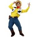 Location costume Woody