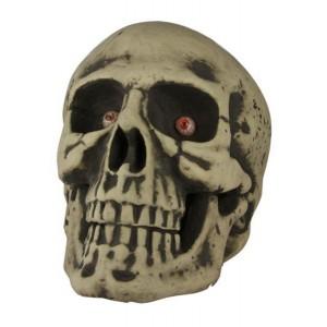 Tête de mort 39cm - Décoration Halloween