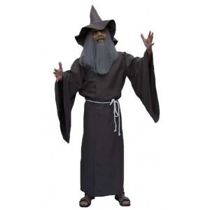Magicien gris