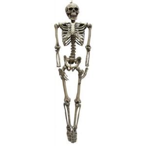 Décoration squelette 160cm