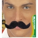 Moustache fermier noire
