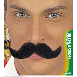 Moustache Ambassadeur adhésive